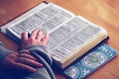 bible - hands